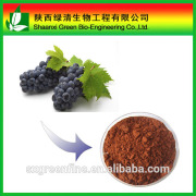 100% Natural Grape seed extract Procyanidin powder