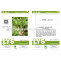 PK23 The no.3 white pakchoi shum seeds, different types of pakchoi seeds for sale