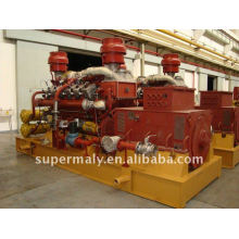 CE approved 300kw lpg generator price
