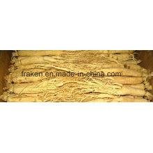 Raiz de ginseng branco de baixo teor de pesticidas de alta qualidade e raiz de ginseng vermelho