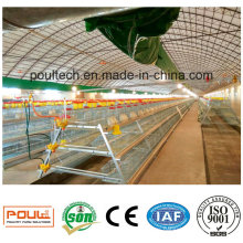 Automatic Chicken Cage for Layer Broiler Pullet