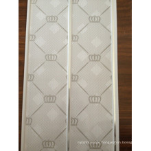 Haining City Ceiling Panel