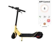 Scooter électrique pliable portable avec chargeur de batterie