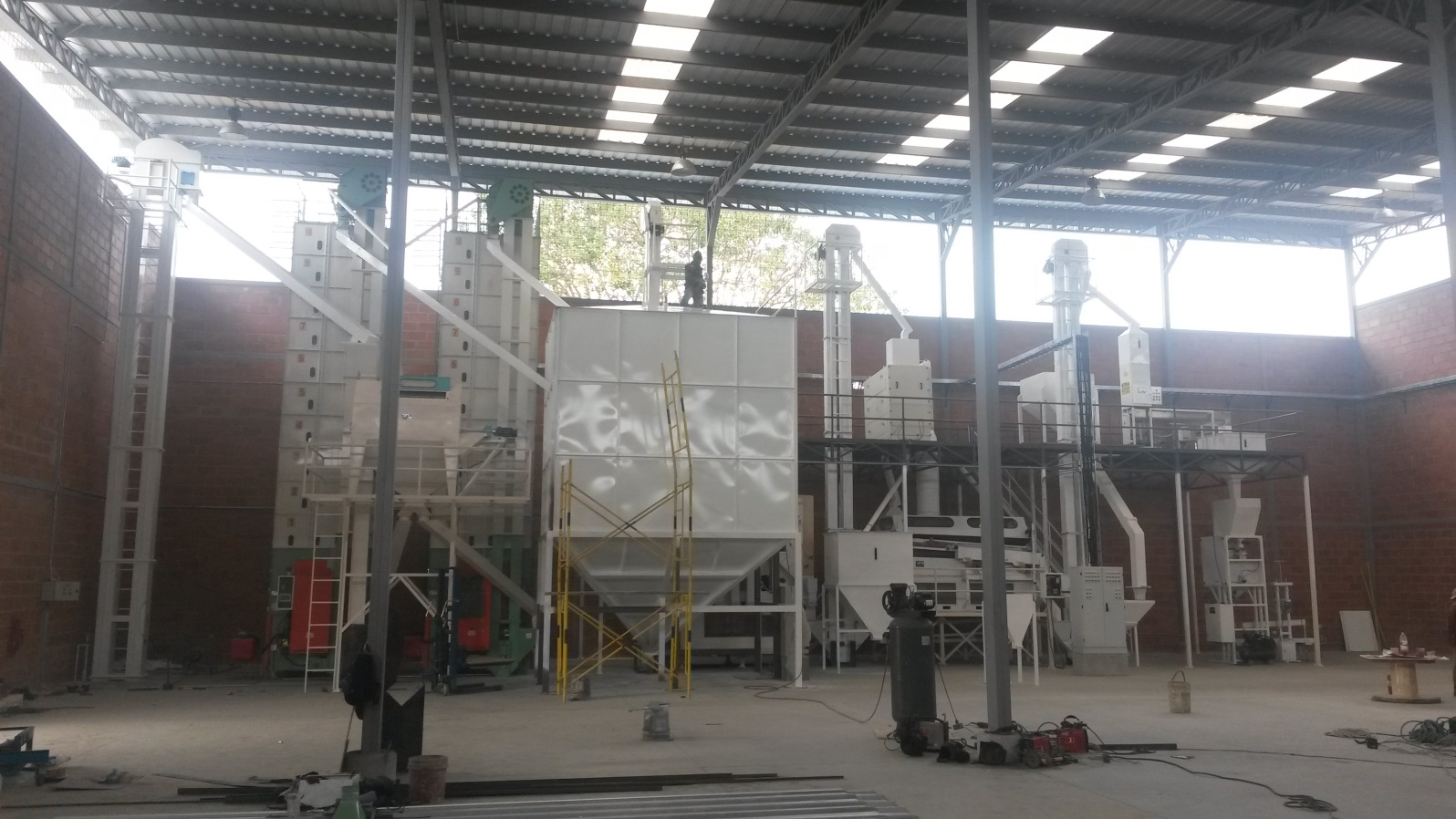rice seed processing plant