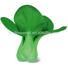 PK07 Aoguan морозостойкие гибрид F1 капуста китайская семена семена рапса посадка