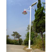 Brsgl113 Effizienz LED Solar Garten Licht