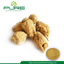 Pure natural maca root extract powder for sale
