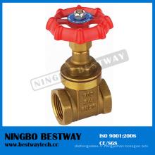 Vente chaude en laiton de valve de porte de roue de chaîne en Chine (BW-G05)