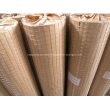 Powder Coat Welded Wire Mesh For Bird Cage