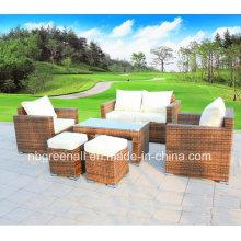 Muebles de ratán PE, conjunto de sofá de ratán al aire libre