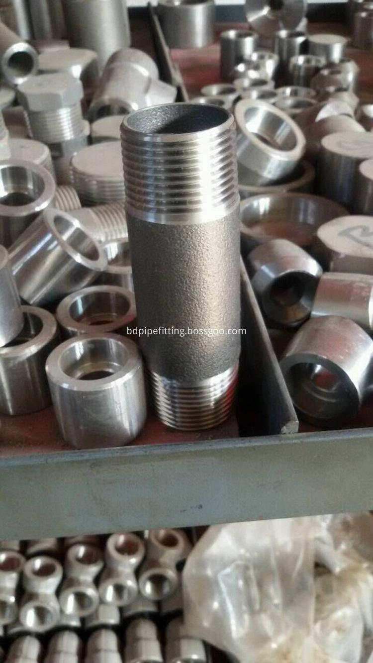 Stainless Steel Female Threaded Full Coupling