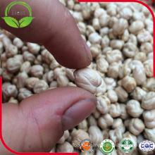 Chickpeas 7mm - 9mm, Kabuli Chickpeas, Desi Chickpeas