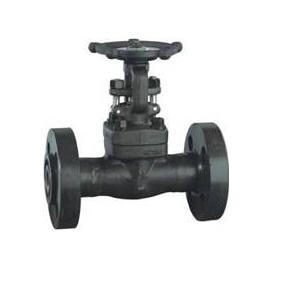 Forged Steel Integral Flanged Gate Valve