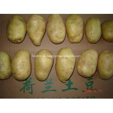 Patata fresca de buena calidad en precio competitivo