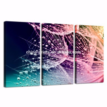 Dandelion Canvas Wall Art for Living Room/closeup Dewdrop on Plant Canvas Prints/colorful Flower Canvas Artwork