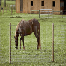 Galvanized Iron Wire Material goat fence panel