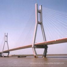 Pont de structure en acier de haute qualité en Chine