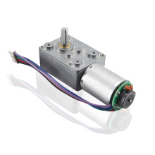 Brushless 12 Volt DC Worm Gear Motor Reduction