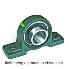 Mounted Units/Bearing Pedestal/Printing Bearing (Ucp204 Ucp204-12)