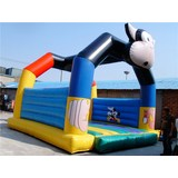 Direct manufacturer inflatable jumpping combo/inflatable bouncer