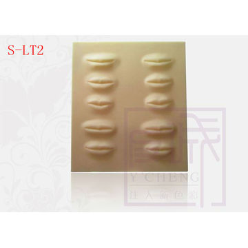 3-D Lip hoja práctica Hoja de tatuaje de maquillaje permanente de alta calidad