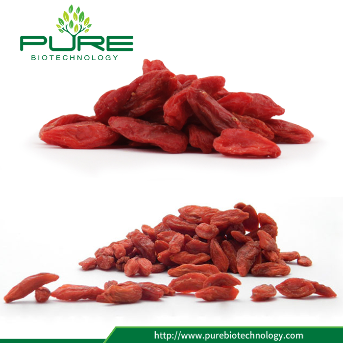 Juicy Goji Berry Still Dried 2017 New Crop (3)