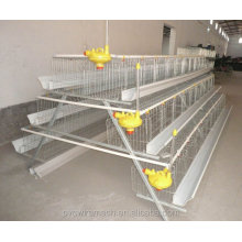 Best Price 96 Chickens Battery Cage With A type For Sale
