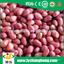 2015 new crop red skin peanut