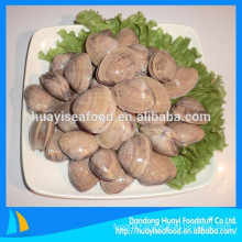 various frozen surf clam in shell competitive price