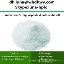 China CAS: 114702-55-5 ADP-K2 / Adenosina 5'-Difosfato Sal dipotásica