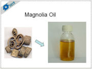 magnolia flower oil painting pure natural health medical