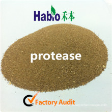 High Efficiency!! Feed Industry Acid Protease Enzyme Factory Supplement