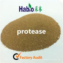 Enzima de Protease Neutural Habio para Alimentação Animal e Melhoria Nutricional