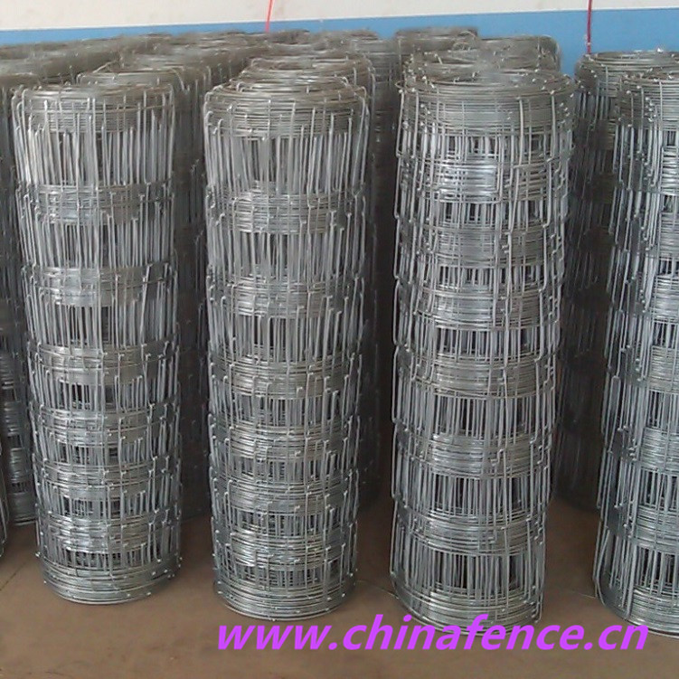 Field Fence for Farm