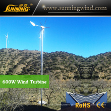 Generador de turbina de viento que acampa de China para el sistema de la energía solar del viento (MAX 600W)