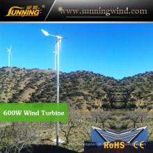 Chine Générateur de turbine de vent de camping pour le système d'énergie solaire de vent (MAX 600W)