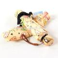 Paraguas único del diseñador de la princesa de las señoras de los productos modificados para requisitos particulares para el regalo