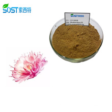 Wholesale Organic Salidroside 3% 50% 98% Rhodiola Rosea Powder Extract