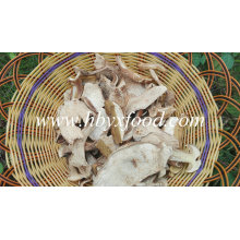 Top Quality Frozen Fresh Wild Porcini Mushrooms