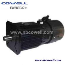 GS corrente contínua elétrica média tamanho DC motor