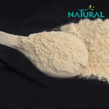 Medicine grade UV 80% ginseng root extract powder