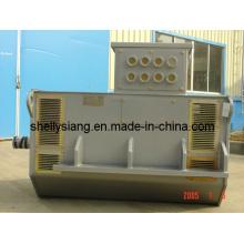Alternateur alternatif à vitesse moyenne (100-1200kw 1000rpm)