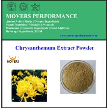 100% натуральный порошок экстракта хризантемы высокого качества