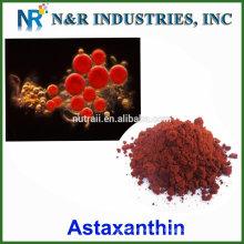 Polvo de astaxantina