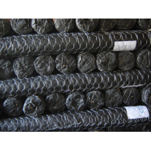 Hot Dipped Gal Chicken Wire Netting (R-YJW)