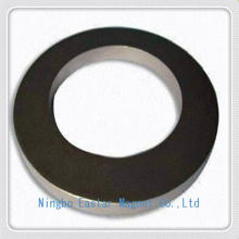 Permanent Automobile Speaker NdFeB Magnet with Nickel Plating