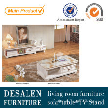 Modern Living Room TV Furniture and Coffee Table (S1300)