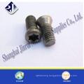 Carbon Steel or Stainless Steel T8 Torx Screw
