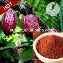 Топ горячие 2015 сексуальную выносливость какао семена дерева какао экстракт
