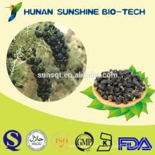El mejor precio de la medicina herbaria Negro goji berry dried fruit exportador
